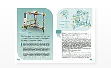 rainieri-articulator-pdf